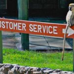Tips For Top Customer Service